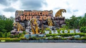 TOUR BANGKOK – PATTAYA 4N3Đ